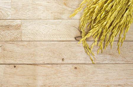 paddy: yellow paddy jasmine rice on wood background with orange soft light