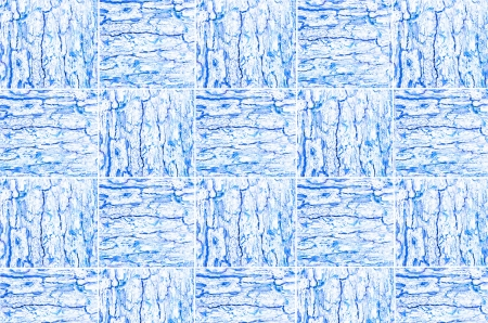 correlate: Blue pattern of woven tree bark