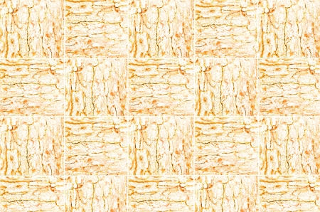 correlate: Orange pattern of woven tree bark