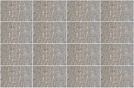Rectangle brown bark pattern texture photo
