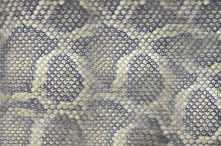 Pattern of boa skin texture photo