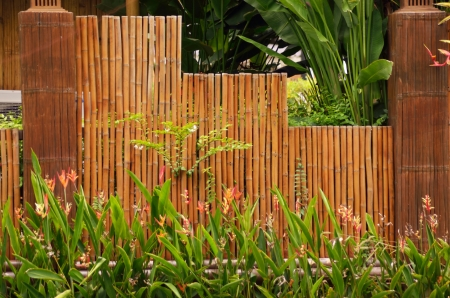Flowers at bamboo wall