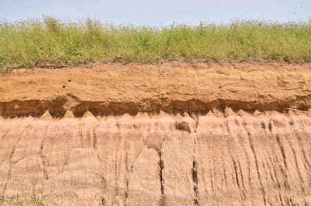 Pattern of soil texture after rained photo