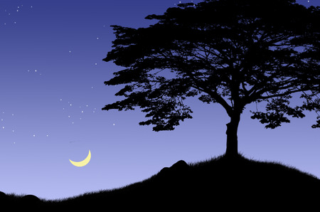 waning moon:  Waning moon over lonely hill
