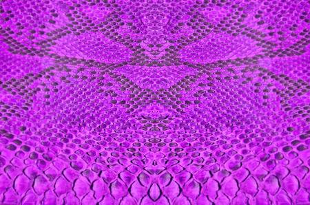 black boa: Violet pattern of spread boa skin
