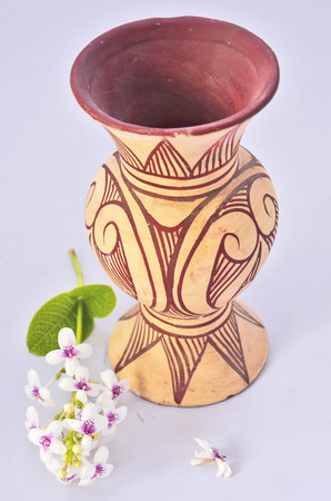 earthen pot: Earthenware vase with flowers on white