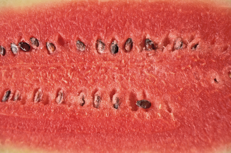 black seeds: Rows of black seeds in red watermelon fruit
