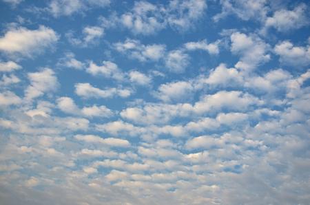 lamina: White lamina cloud on blue sky