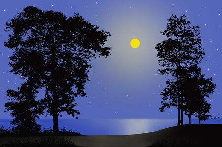 lonesome: Lonely full moon night beside the sea