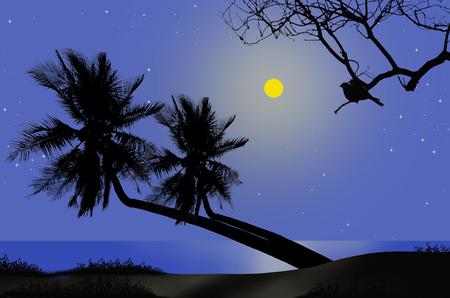lonesome: Romantic full moon night beside the sea