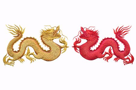 Double beautiful dragons on white background