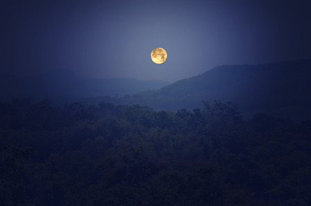 moon chair: Beautiful full moon over the forest