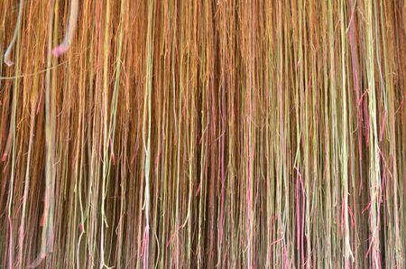 Beautiful and wonderful of root pattern Stock Photo