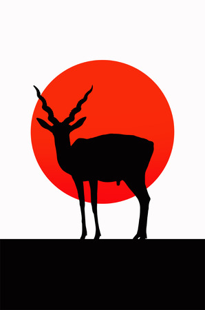 Male antelope shadow with red sun background Imagens