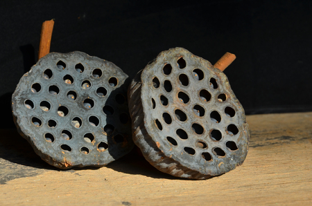 hole: Holes and seeds of dried lotus fruit pattern