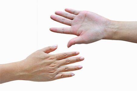 dedo meÑique: Palm and backhanded of slender hands Foto de archivo