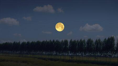 Beautiful full moon in blue sky over the field Stok Fotoğraf