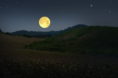 Big full moon over the valley and hills 版權商用圖片