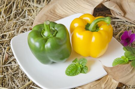 Beautiful green and red sweet pepper dish Imagens