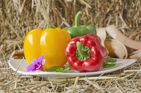 Ceramic dish of bright sweet peppers on straw floor