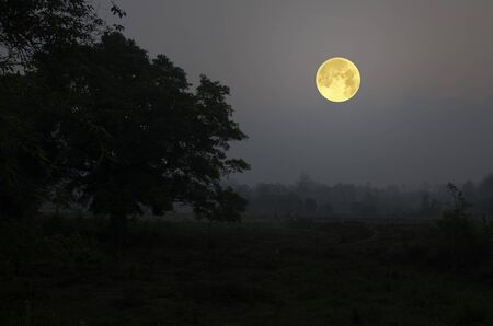 Beautiful full moon in countryside of Thailand