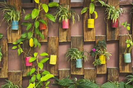 Decorative pots of ornament plants on art wooden wall