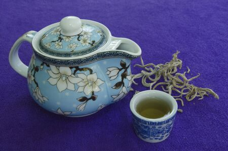 African violet leaf teapot and cup on clothes floor Banco de Imagens