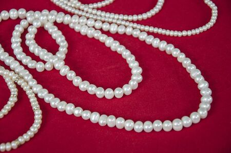 Beautiful white pearl necklaces on red floor Banco de Imagens