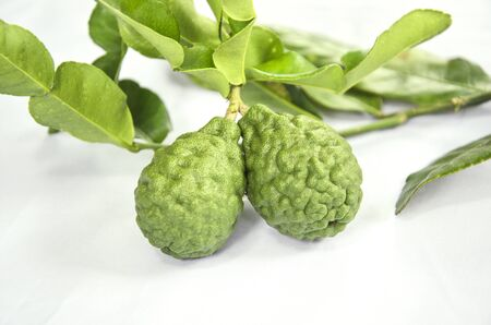 Two fresh kaffir limes with leaves on white floor
