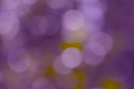 Beautiful blurry violet circle light pattern on leaves Imagens - 134478160