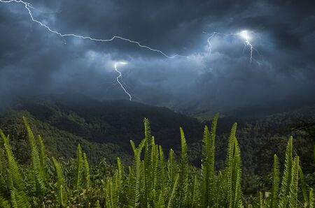 Lightning and thunder storm over the mountains in monsoon season Imagens - 134478198
