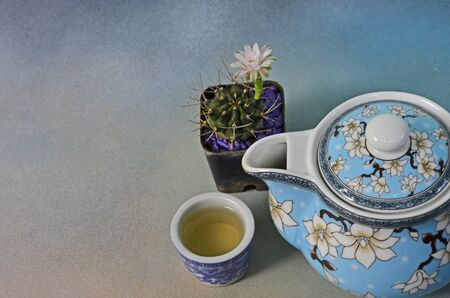 Cup of tea with beautiful teapot cactus flower pot Imagens - 134478230