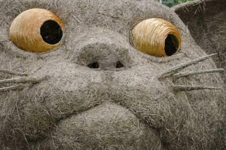 Big face detail picture of cat sculptured straw puppet