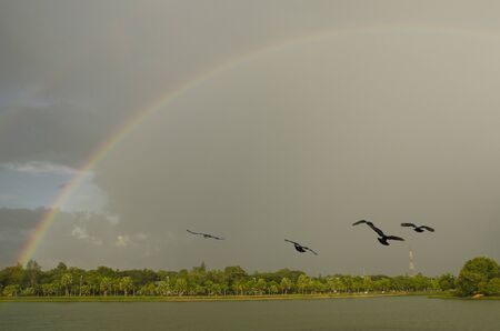 Beautiful rainbow in the sky over the lake