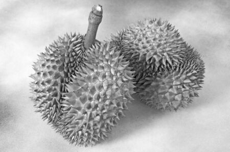 Black and white king of fruit is Durian from Thailand
