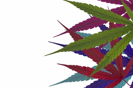 Many colors of cannabis leaves on white background Imagens