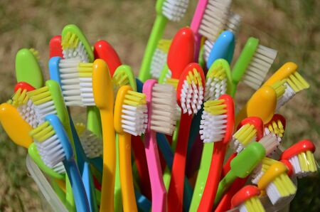 Beautiful colored toothbrushes in sunlight Imagens