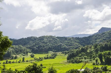 Rainy clouds over green mountains and rice field