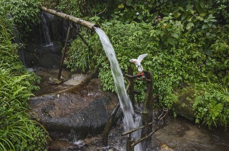Passing clean water from the cliff with bamboo trunk Imagens