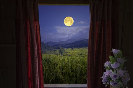 Full moon over green rice field valley in window view Imagens