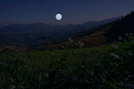 Falling full moon over the mountains in early morning Imagens