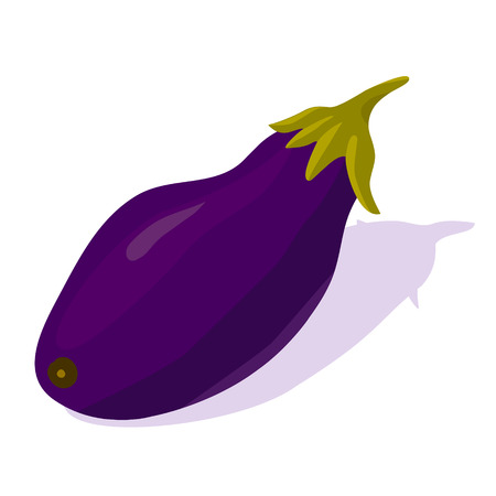 A purple eggplant with shadow. Isolated image on white background. Vector.