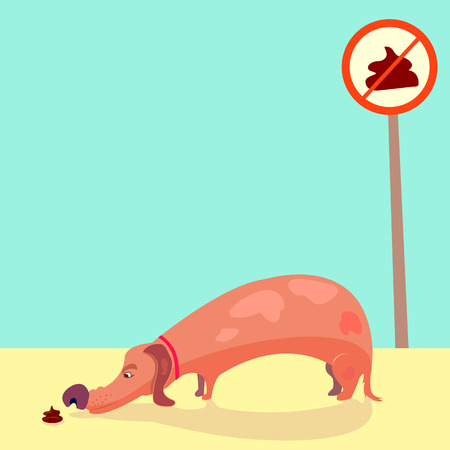 dog sniffs poop. doggie with short legs sniffing shit. cartoon style long dog like a dachshund with red collar. No pooping sign. Beautiful illustration. vector, eps 8 Illustration