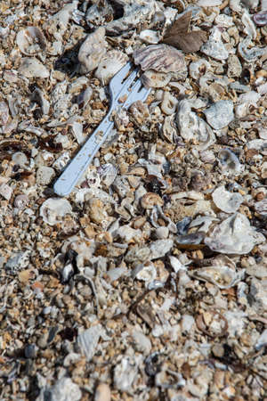 Sand beach full of sea shells and a white plastic fork found.