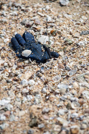 A deep blue winter yarn glove found trashed on the beach surrounded with sea shells. 写真素材