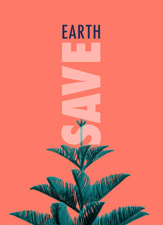 Save Earth awareness on Earth day with a top part of a Norfolk Island Pine tree (Araucaria heterophylla), in a minimal style, standing against peach color background. 写真素材