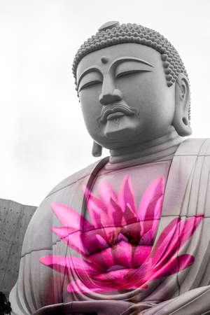 Superimposed or double exposures of Giant sitting & peaceful Buddha statue inside Hill of the Buddha with a beautiful pink lotus. Buddhist shrine at Makomanai Takino Cemetery, Sapporo, Hokkaido, Japan.
