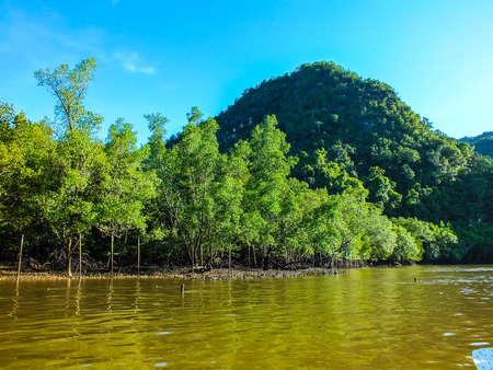 paradigma: Se adhieren a la madera paradigma barco costa atractivo tur�stico Krabi Tailandia hermosa isla mar marina 2 Foto de archivo