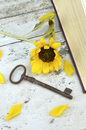 Old rusty key and sunflower on a wooden old table