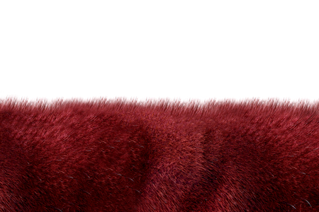 Purple fur isolated on fur background 版權商用圖片